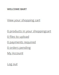 WooCommerce My Account Widget 1